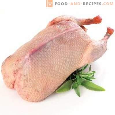 Eend vlees: voordeel en schade