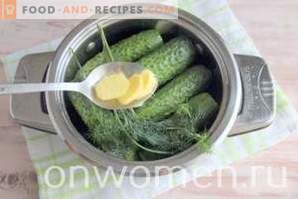Gezouten komkommer met gember