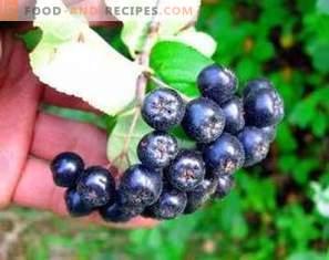Black Chokeberry Wine