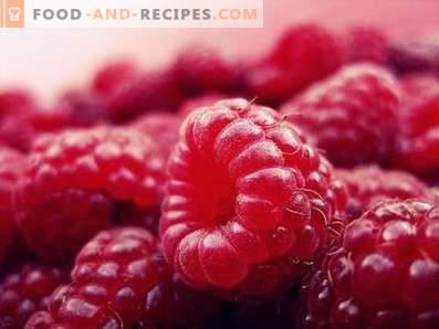 Raspberry: nuttige eigenschappen en contra-indicaties