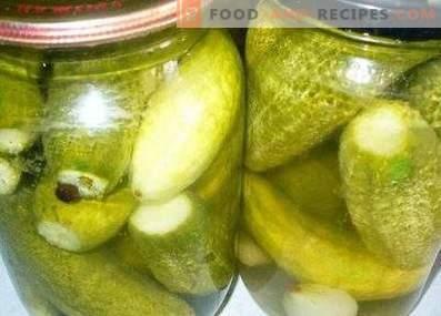 Bulgaarse komkommers voor de winter