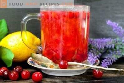 Cranberrysap